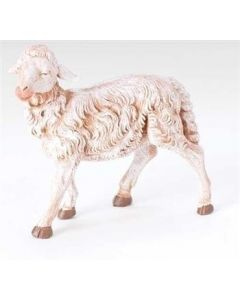 Sheep, Head Straight