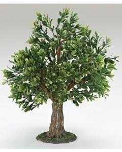 """13""""ALBERO TREE FIG"""