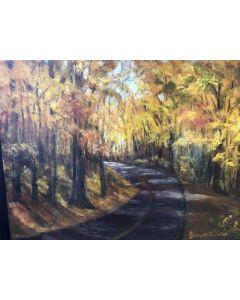 """""""Road at Radnor"""""""